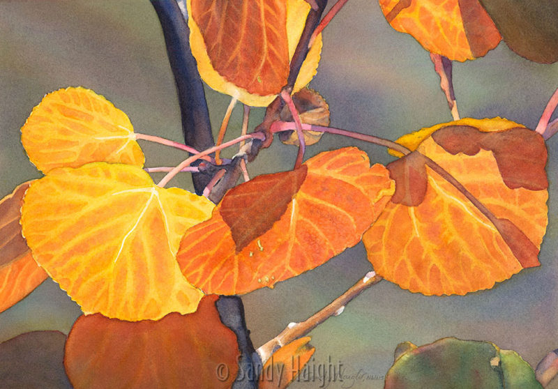 A close up watercolor painting of gold ginkgo leaves