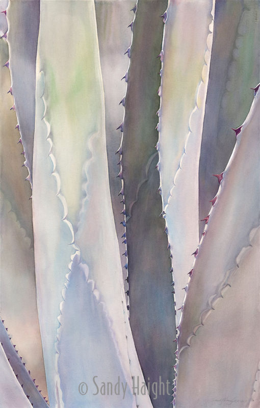 Large thorny petals of this agave plant are focused in on to see the pattern and subtle neutral colors of the vertical shafts in a large watercolor painting.